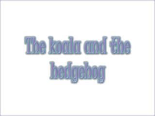 The koala and the hedgehog