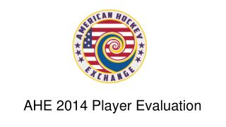 AHE 2014  Player Evaluation