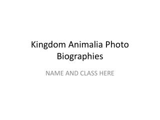 Kingdom Animalia Photo  Biographies