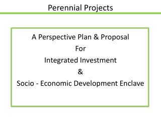 Perennial Projects