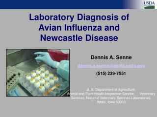Laboratory Diagnosis of  Avian Influenza and Newcastle Disease