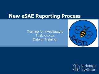 New  eSAE  Reporting Process