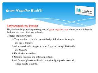 Gram Negative Bacilli