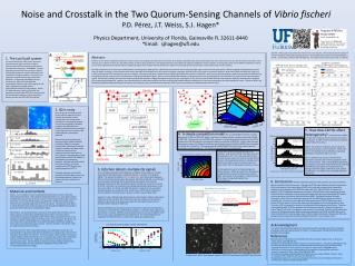 Noise and Crosstalk in the Two Quorum-Sensing Channels of  Vibrio  fischeri