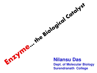 Enzyme Basic Principle