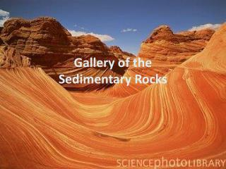 Gallery of the  Sedimentary Rocks