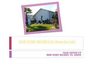 NEW PORT RICHEY FL Home for Sale - 7635 UPTON CT