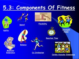 5.3: Components Of Fitness