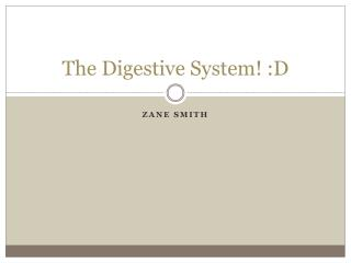 The Digestive System! :D