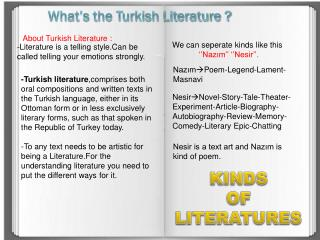 What's the Turkish Literature ?