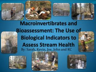 Macroinvertibrates and Bioassessment: The Use of Biological Indicators to Assess  S tream Health