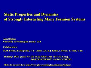 Static Properties and Dynamics   of Strongly Interacting Many Fermion Systems