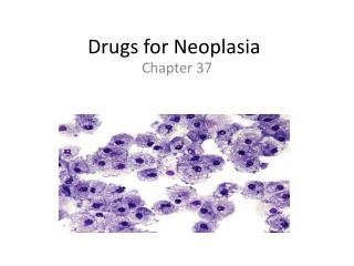 Drugs for Neoplasia