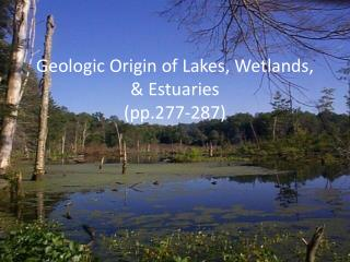 Geologic Origin of Lakes, Wetlands, & Estuaries (pp.277-287)