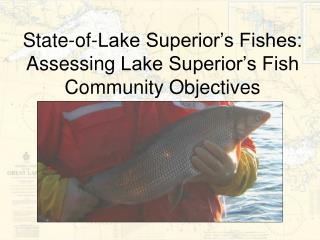 State-of-Lake Superior's Fishes: Assessing  Lake Superior's Fish Community Objectives