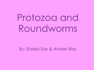 Protozoa and Roundworms