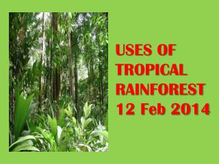 USES OF TROPICAL RAINFOREST  12 Feb 2014