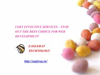 COST EFFECTIVE SERVICES - EagleRay Technology