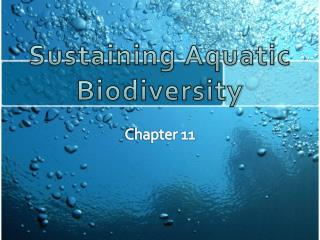 Sustaining Aquatic Biodiversity