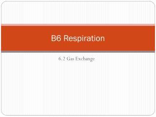 B6 Respiration