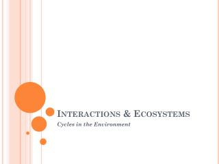 Interactions & Ecosystems