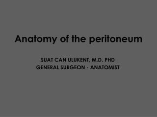 Anatomy of the peritoneum