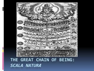 The Great Chain of Being: scala natur ӕ