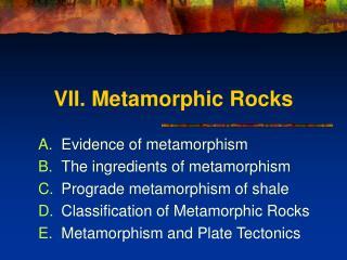 VII. Metamorphic Rocks