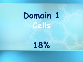 CELLULAR RESPIRATION Enzymes Chapter 89