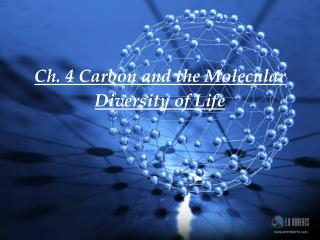 Ch. 4 Carbon and the Molecular Diversity of Life