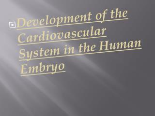 Development of the Cardiovascular System in the Human Embryo