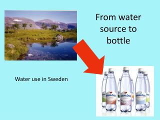 From water source to bottle