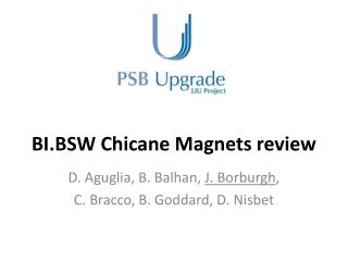 BI.BSW Chicane Magnets review