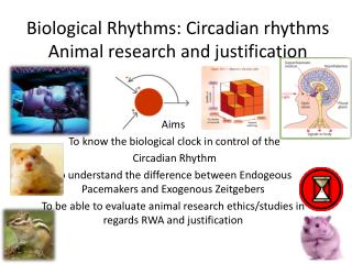 Biological Rhythms: Circadian rhythms  Animal research and  justification