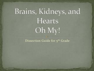 Brains, Kidneys, and Hearts  Oh My!