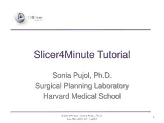 Slicer4Minute Tutorial