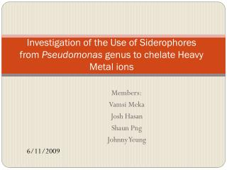 Investigation of the Use of Siderophores from  Pseudomonas  genus to  chelate  Heavy Metal ions