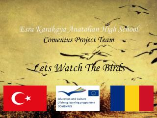 Esra  Karakaya Anatolian High School Comenius  Project  Team