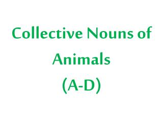Collective Nouns of Animals (A-D)
