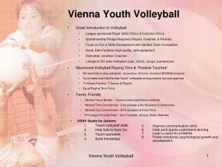 Vienna Youth Volleyball