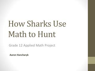 How Sharks Use Math to Hunt
