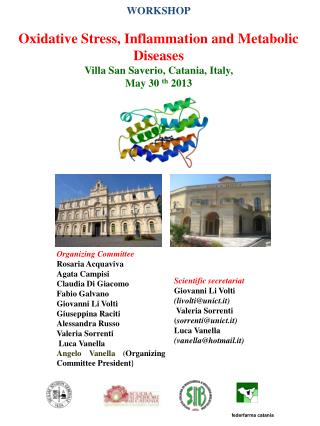 WORKSHOP Oxidative Stress, Inflammation and Metabolic Diseases  Villa San Saverio, Catania, Italy,