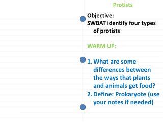 Objective: SWBAT identify four types of protists WARM UP: