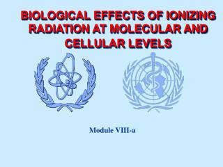 BIOLOGICAL EFFECTS OF IONIZING RADIATION  AT MOLECULAR AND CELLULAR LEVELS
