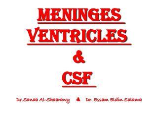 Meninges ventricles  & CSF