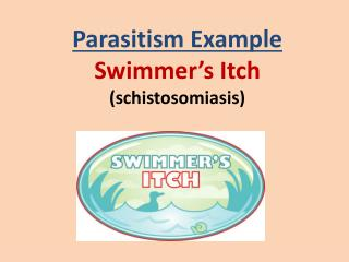 Parasitism Example Swimmer's Itch ( schistosomiasis )
