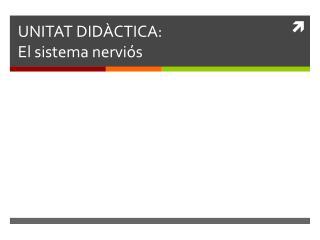 UNITAT DIDÀCTICA: El sistema nerviós