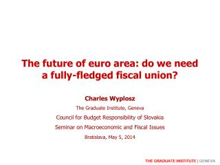 The future of euro area: do we need a fully-fledged fiscal union?