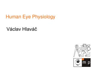 Human Eye Physiology