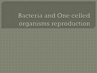 Bacteria and One celled organisms reproduction
